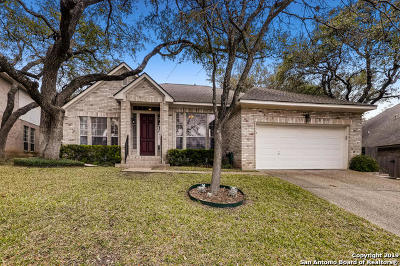Single Family Home Active Option: 2507 Hollow Village Dr