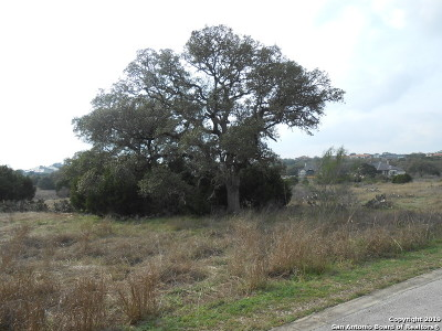 New Braunfels Residential Lots & Land New: 5721 Palisades View