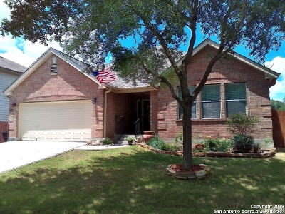 New Braunfels Single Family Home New: 240 Hondo Dr