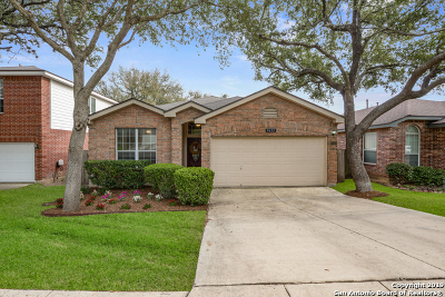 Helotes Single Family Home New: 8622 Eagle Peak