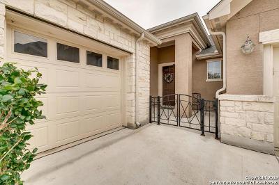 Alamo Ranch Single Family Home New: 11206 Ginger Hazel