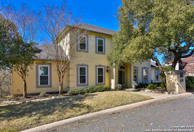 Bexar County, Kendall County Single Family Home New: 29739 High Eschelon