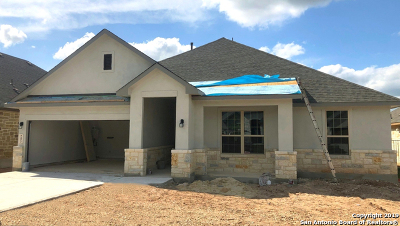 New Braunfels Single Family Home New: 243 Bamberger
