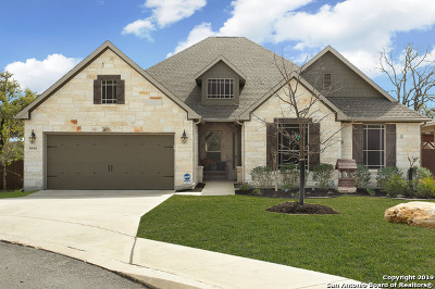 Fair Oaks Ranch Single Family Home New: 8910 Fowler Hl