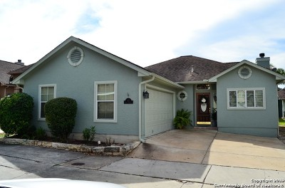 New Braunfels Single Family Home New: 117 Seth Raynor Dr
