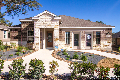 Comal County Single Family Home New: 2931 Daisy Meadows