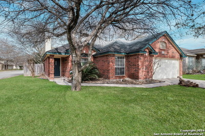 San Antonio TX Single Family Home New: $249,000