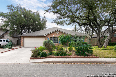 San Antonio Single Family Home New: 7015 Andtree Blvd