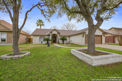 San Antonio Single Family Home New: 8238 Misty Willow St