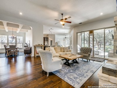 Bexar County Single Family Home New: 27710 Recanto