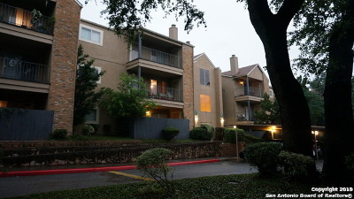 San Antonio Condo/Townhouse New: 4119 Medical Dr #204E
