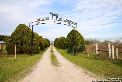 Seguin Single Family Home For Sale: 2715 Elm Creek Rd