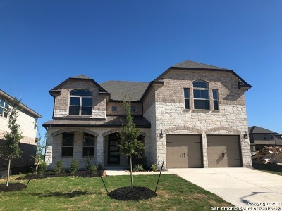 Cibolo Single Family Home For Sale: 236 Kilkenny