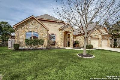 Boerne Single Family Home New: 214 Lone Tree