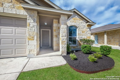 New Braunfels Single Family Home New: 759 Guna Dr