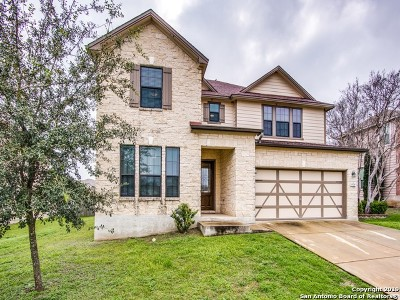 San Antonio TX Single Family Home New: $291,000