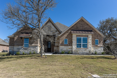 Castroville Single Family Home For Sale: 197 Texas Bend