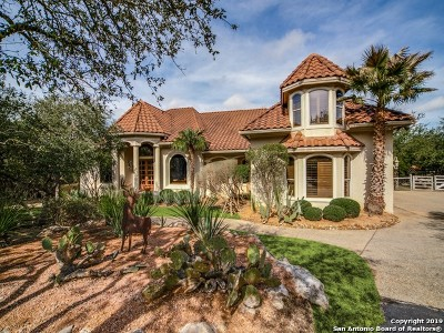Boerne Single Family Home For Sale: 327 Park Ridge