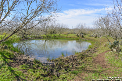 Atascosa County Farm & Ranch For Sale: 3895 County Road 430