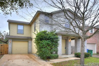 San Antonio Single Family Home New: 42 Knights Peak
