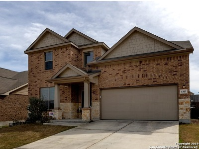 New Braunfels Single Family Home New: 6313 Iris Run