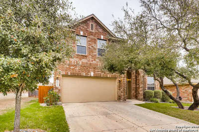 San Antonio Single Family Home New: 5615 Bonham Path