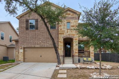 San Antonio TX Single Family Home New: $358,000
