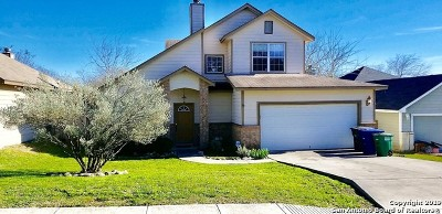 San Antonio Single Family Home New: 5386 Chestnut View Dr