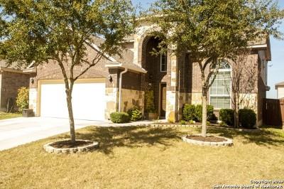 San Antonio Single Family Home New: 12423 Caprock Creek
