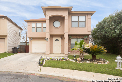 San Antonio Single Family Home New: 15 Viaduct Post