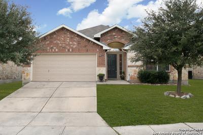 San Antonio Single Family Home New: 8411 Pale Horse Ln