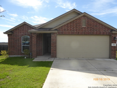 New Braunfels Single Family Home Active Option: 722 Wolfeton Way