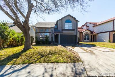San Antonio Single Family Home New: 10230 Basin Field
