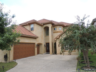 San Antonio Single Family Home New: 110 Stone Hill Dr