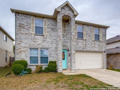 San Antonio Single Family Home New: 127 Blue Juniper