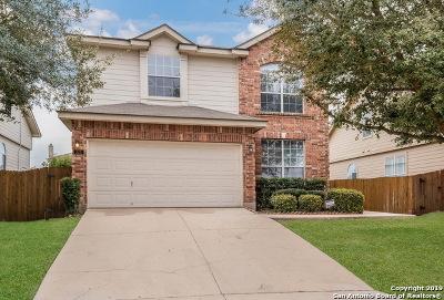 San Antonio Single Family Home New: 323 Fire Wheel