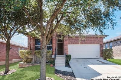 San Antonio Single Family Home New: 12214 Redbud Leaf