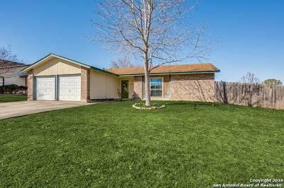 San Antonio Single Family Home New: 10311 Prescott Dr