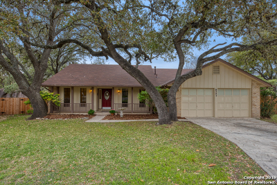 San Antonio Single Family Home New: 8543 Chimneyhill St