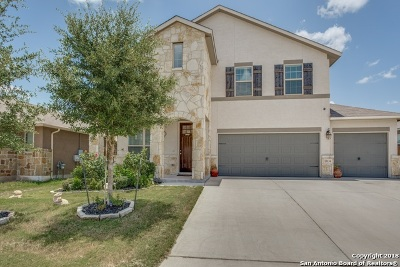 San Antonio Single Family Home New: 13134 Dakota Valley