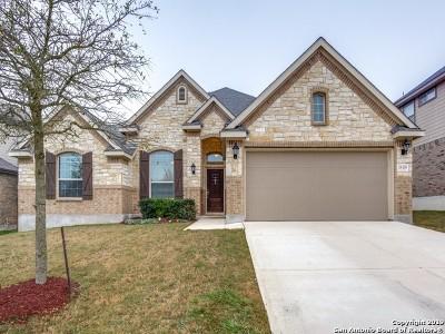 San Antonio TX Single Family Home New: $314,880