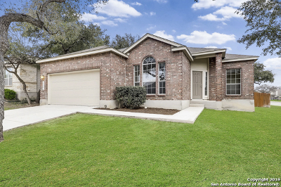 Helotes Single Family Home For Sale: 10607 Cosmos Canyon