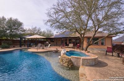 Schertz, Cibolo Single Family Home Active Option: 904 Blue Forest Dr