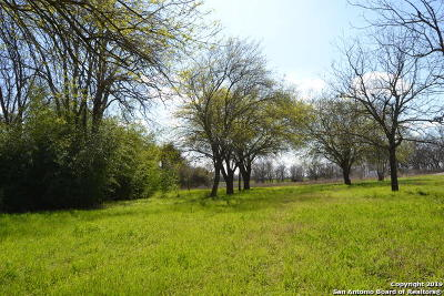 Hondo Single Family Home Active Option: 240 County Road 4520