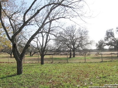Guadalupe County Farm & Ranch For Sale: 14596 Alternate 90