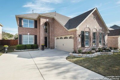 Helotes Single Family Home For Sale: 13156 Mystic Saddle