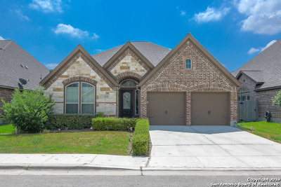 Seguin Single Family Home For Sale: 2131 Pioneer Pass