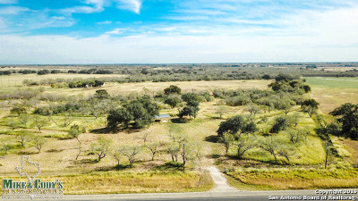 Atascosa County Farm & Ranch For Sale: 12060 N State Highway 16