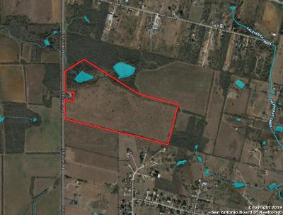 San Antonio Farm & Ranch For Sale: 1378 S Foster Rd