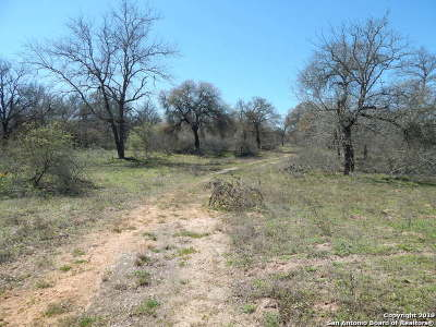 Atascosa County Farm & Ranch For Sale: 370 Webb Road